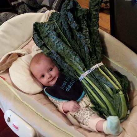 bale of kale